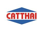 cat-thai1