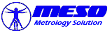 Meso_logo21